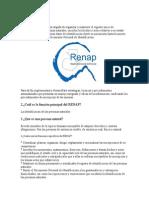 Qué es el RENAP.doc