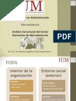 Análisis Estructural Del Sector - Elementos de Mercadotecnia(2)