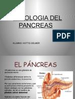 FISIOLOGIA DEL PANCREAS.pptx