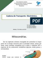 Cadena de Transporte Electronico