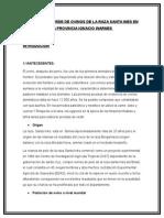PROYECTO ovinodalcycompleto.docx