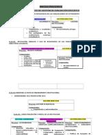 macro proceso d  ienss 2013