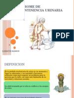 Sindrome de Incontinencia Urinaria