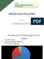 4. Carbohidratos y Lípidos (presentacioin)