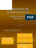 metabolismo de acidos nucleicos