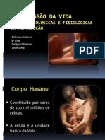 (2) - 2008-2009 - 9º Ano - Ciências Naturais - Transmissão da Vida - Bases Morfológicas
