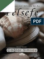 Çağlar Simsoy - Çınar Ağacının Altında Bir Ay Felsefe.pdf