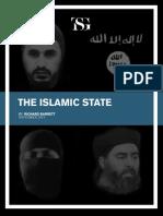TSG the Islamic State Nov14