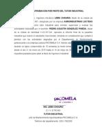 MODELO Carta de Aprobación Por Parte Del Tutor Industrial