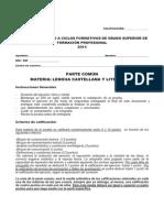 GS PC Jun14 Lengua Castellana y Literatura