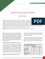 0851_ICJ_Article_Karen.pdf