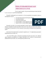 Curs 1 Procedura Civila - Principiile Fundamentale Ale Procesului Civil