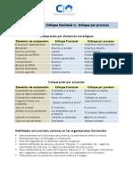 Organizacion Enfoque Funcional vs Organizacional