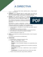 LA DIRECTIVA.docx