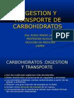 Digestio y Transporte de Carbohidratos