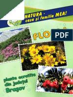 plante ocrotite din judetul Brasov.pdf