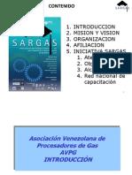 Asociacion Venezolana de Procesadores de Gas