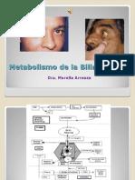Metabolismo de La Bilirrubina.