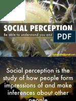 Social Perception1