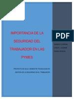 IMPORTANCIA DE LA SEGURIDAD DEL TRABAJOR EN LAS PYMES ( PROYECTO DE AULA).pdf