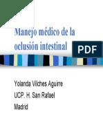 oclusion intestinal