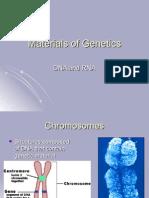 Materials of Genetics