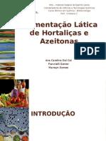 Biotecnologia - Fermentação _RESUMO