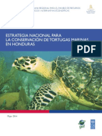 Estrategia Nacional Tortugas_PRESS Ultima (3)