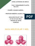 Masa molecular y mol