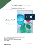 Nanobiomateriale - Fe3O4