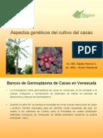 Aspectos Genéticos Del Cultivos Del Cacao
