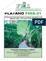 platano fhia-21