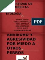 Caso Clinico Etologia