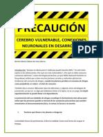 PRECAUCIÓN CEREBRO VULNERABLE, CONEXIONES NEURONALES EN DESARROLLO..pdf