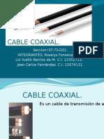 Cable Coaxial Exposicion