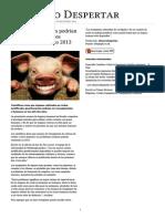 Cerdos transgénicos podrían proporcionar órganos humanos para el año 2013.pdf