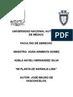 MI PLANTA DE NARANJA LIMA COMPLETO.docx