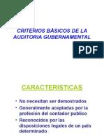 Criterios Básicos de La Auditoria Gubernamental