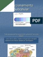 Fraccionamiento_Subcelular