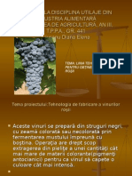 Proiect La Disciplina Utilaje Din Industria Alimentară