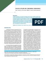 2538-7752-1-PB.pdf