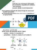 acizii nucleici ppt1