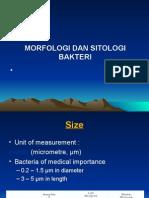 1.Mofologi Dan Sitologi Bakteri Mikrobio