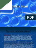 134886959-Celulele-Stem2.ppt