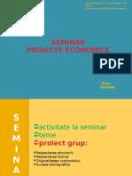 Proiecte-economice