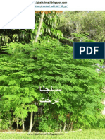 MORINGA TREE BENIFITS