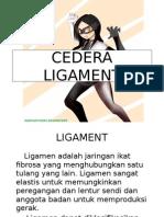 CEDERA LIGAMENT