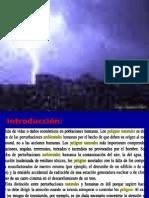 2) Peligros Amb Naturales-Defensa Civil