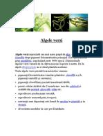 alge verzi.rtf