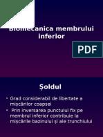Biomecanica Membrului Inferior